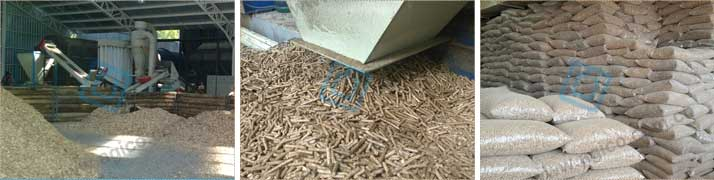 Finished wood pellets of complete biomass pelletizing plant