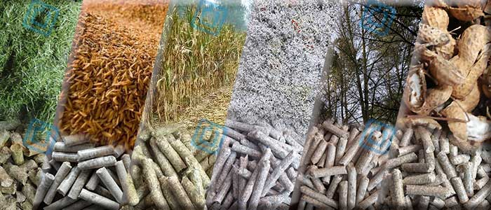 The Raw Materials of Small Biomass Pellet Production Line
