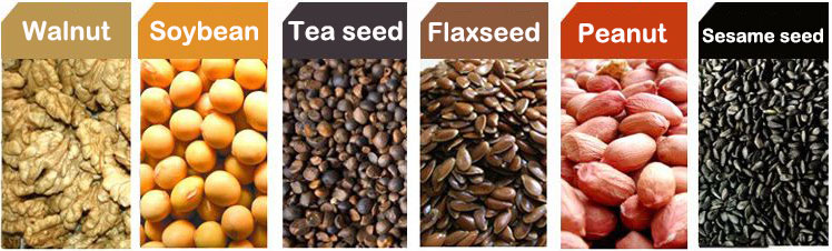 Variety of edible oilseeds